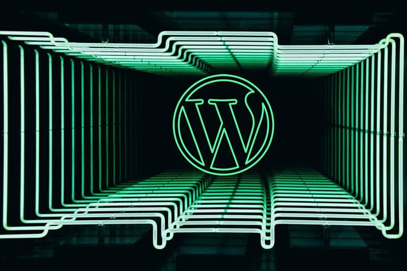 Wordpress logo on green infinity lines